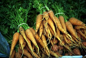 Carrots with stems.jpg